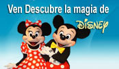 Tours a Disney World desde Lima